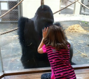 Zoe and Patrick bond through the viewing glass at Riverbanks Zoo