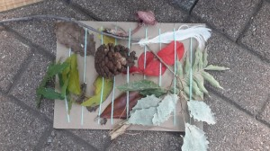 Teachers made a weaving board from an old cereal box and items found in nature.