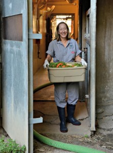Gorilla keeper Cindy McCaleb brings fresh food into the gorilla habitat./Dallas Zoo