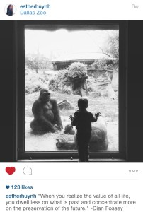 THIRD PLACE: Esther Huynh captures an intimate moment of a little boy with a gorilla.