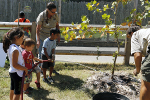 Children help plant and water trees during our Forest Wildlife Weekend event.