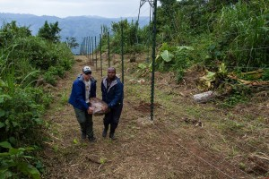 keith helps staffer build enclosure