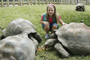 10-year-old Gracie Wakefield saves our tortoise from ingesting water bottle.