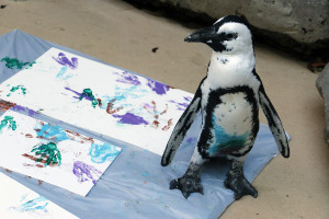 _MG_5807-Opus penguin painting