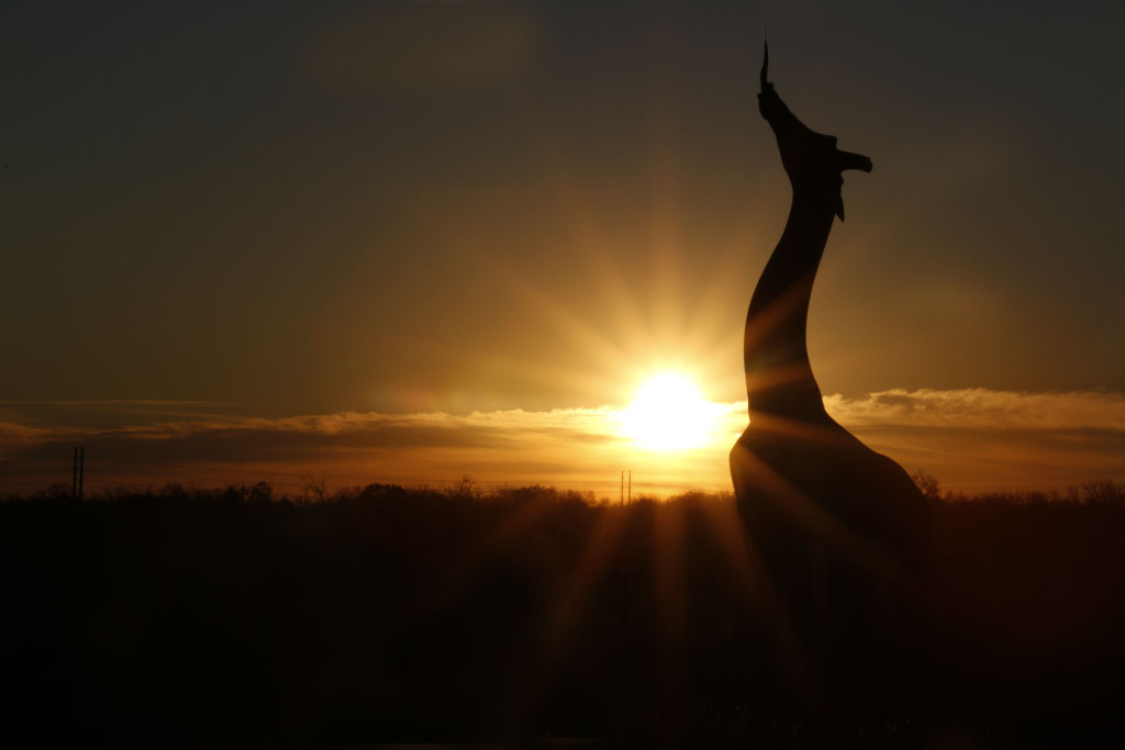 _MG_8058-Giraffe statue at sunrise-4x6-CB
