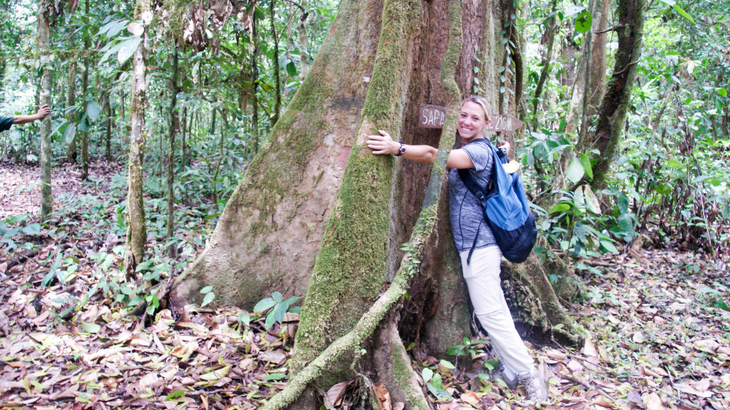 With her love of trees and primates, Lisa was a perfect fit for this Earthwatch expedition.