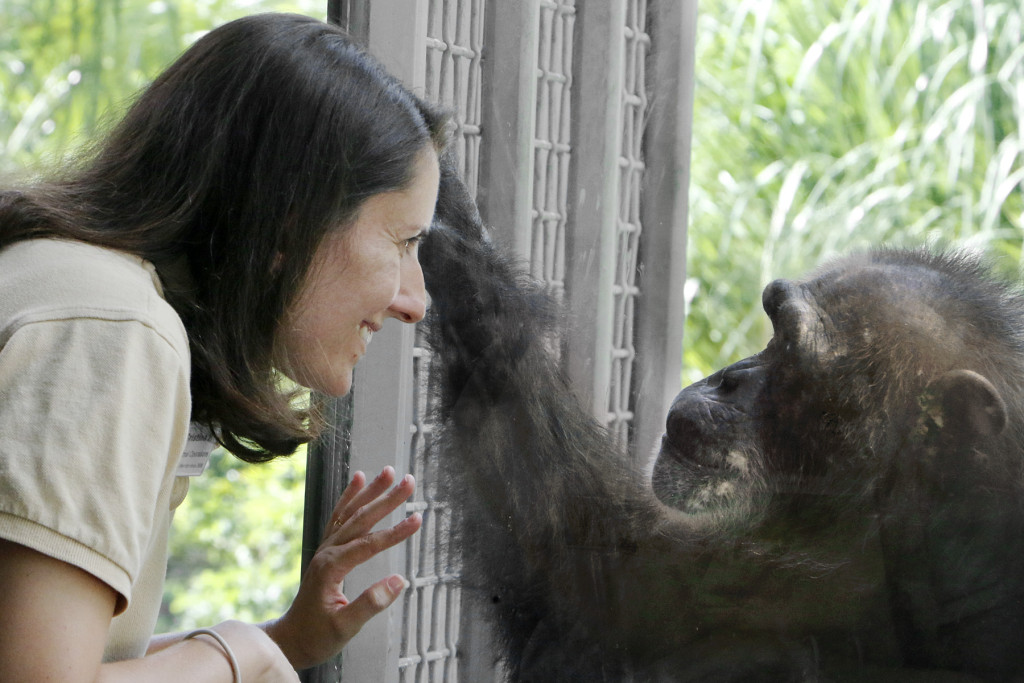 Keeper Cristina Powers shares a moment with chimp Missy.