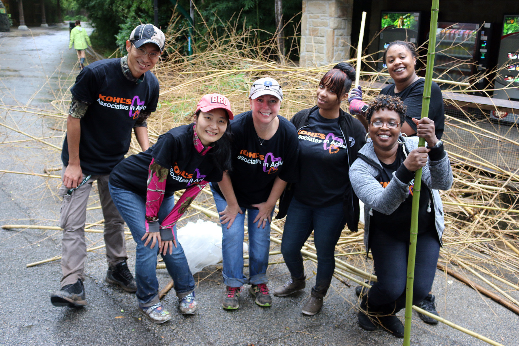 Kohl's, one of our most dedicated groups, works hard to clear bamboo out of our tiger habitat. We're honored Kohl's donated funds to our volunteer programs, and frequently spends time helping our Zoo.