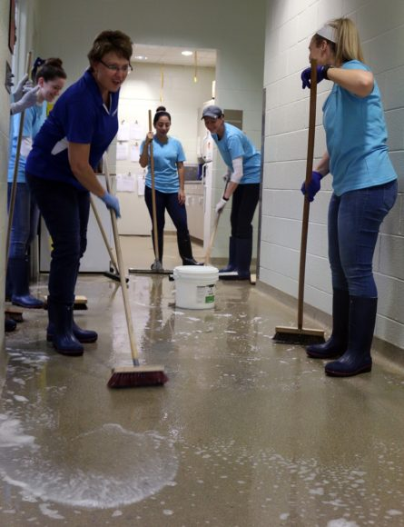 Kimberly-Clark Corporation volunteers clean the floors of our animal hospital.