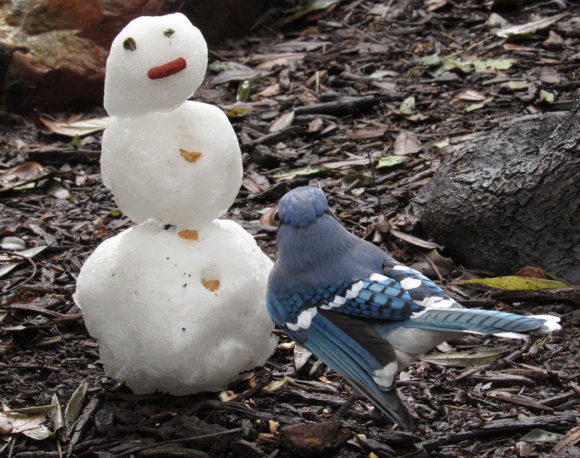 A snowman is a non-traditional bird feeder, but can work in a pinch as long as the weather cooperates.