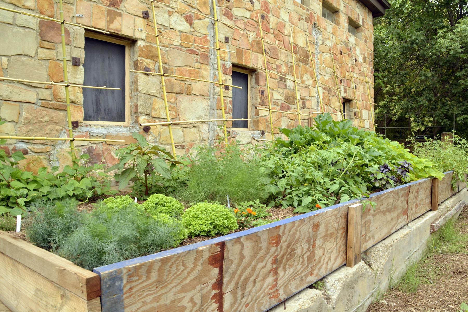 Garden Photo2 AA